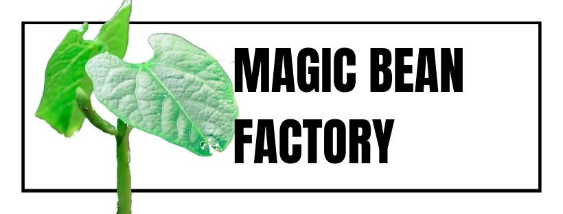 The Magic Bean Factory